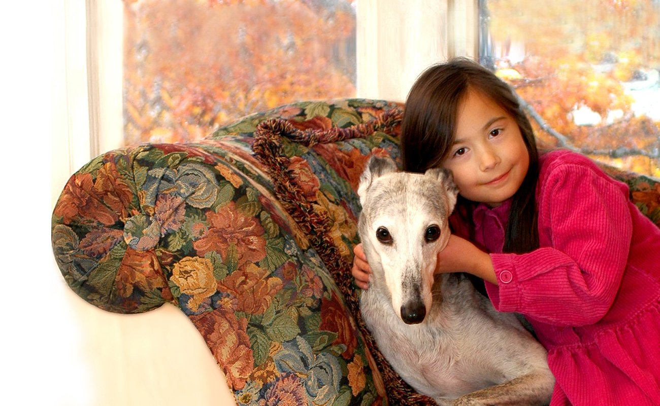 dog on couch with child